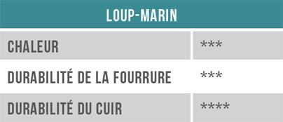 Tableau - Loup-marin