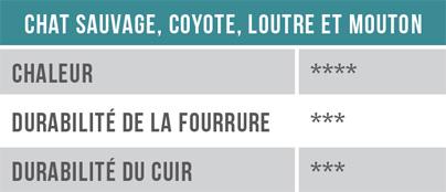 Tableau - Chat sauvage, coyote, loutre et mouton
